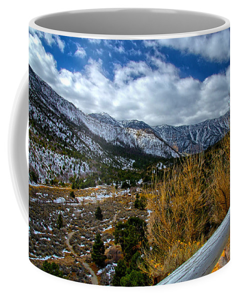 Spring Mountains Coffee Mug featuring the photograph White Fence by John Dauer
