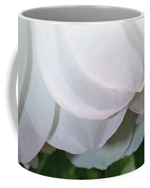 Nature Coffee Mug featuring the photograph White Floral by Tikvah's Hope