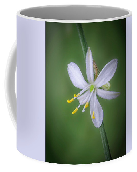 Abstract Coffee Mug featuring the photograph White Flower by Lynn Geoffroy