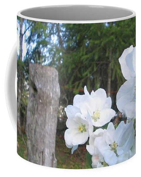 Flowers Coffee Mug featuring the photograph White Flowers by Valerie Josi