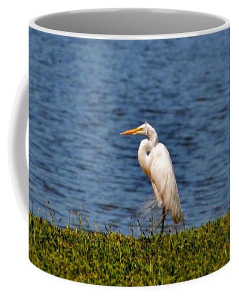 Heron Coffee Mug featuring the photograph White Heron by Eileen Brymer