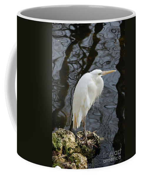 White Heron Coffee Mug featuring the photograph White Heron by Robert Meanor