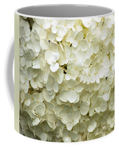 White Coffee Mug featuring the photograph White Hydrangea by Kathleen Struckle