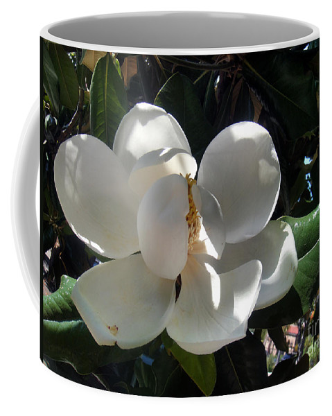 White Magnolia Coffee Mug featuring the photograph White Magnolia Flower 01 by Sofia Metal Queen