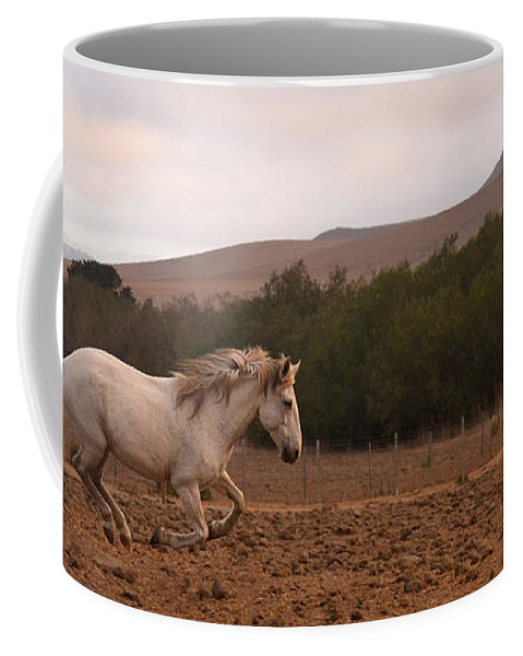 Rtf Ranch Coffee Mug featuring the photograph White Mare Gallops #1 - Panoramic Brighter by Heather Kirk