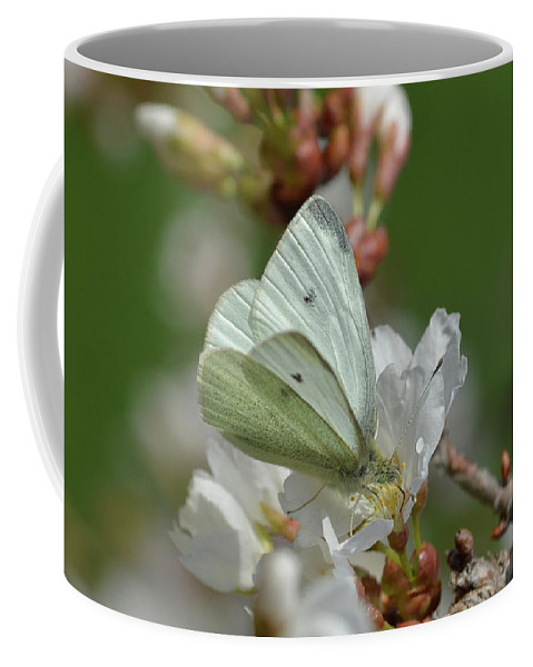 Moth Coffee Mug featuring the photograph White Moth On Blossom by Barbara Treaster