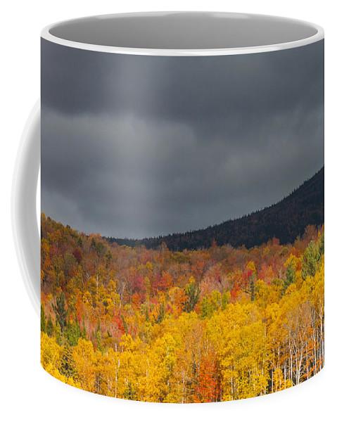 Natanson Coffee Mug featuring the photograph White Mountain Hillside by Steven Natanson