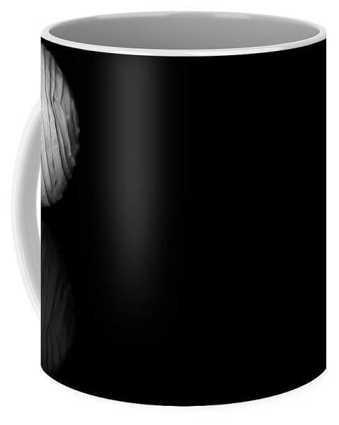 Black And White Coffee Mug featuring the photograph White On Black V2 by Lisa Knechtel