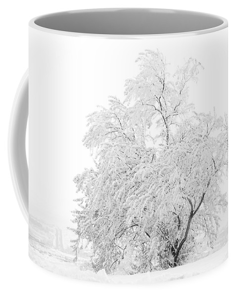 Snow Coffee Mug featuring the photograph White On White by Marilyn Hunt