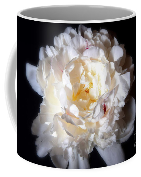 White Coffee Mug featuring the photograph White Peony by Camelia C