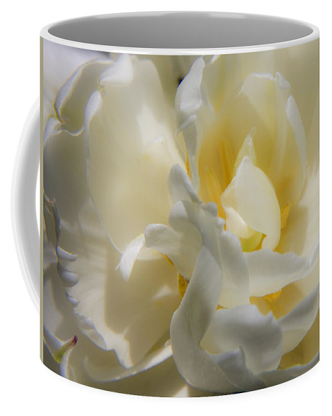 White Coffee Mug featuring the photograph White Peony Tulip Detail by Teresa Mucha