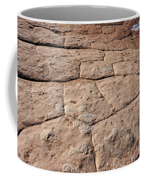 White Pocket Coffee Mug featuring the photograph White Pocket - Nature's Pavement by Sheryl Young