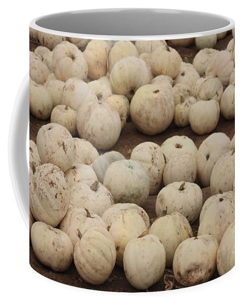 White Pumpkins Coffee Mug featuring the photograph White Pumpkins by Carol Groenen