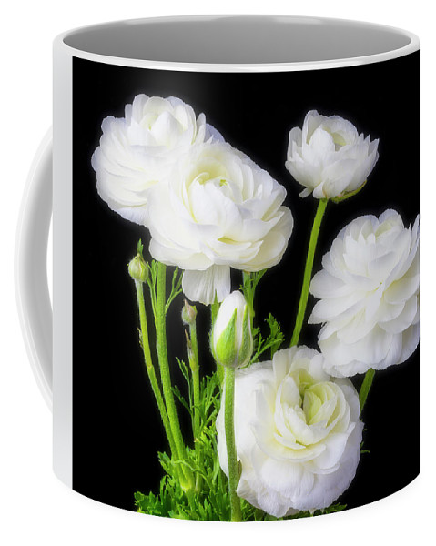 White ranunculus flowers coffee mug for sale by garry gay front right view mightylinksfo