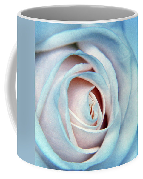Wall Art Coffee Mug featuring the photograph White Rose by Alex England