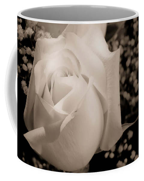 Flowers Coffee Mug featuring the photograph White Rose Bw Fine Art Photography Print by James BO Insogna