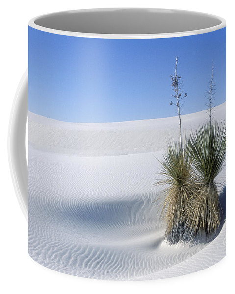 White Sands Coffee Mug featuring the photograph White Sands Dune And Yuccas by Sandra Bronstein