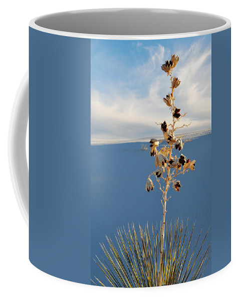 White Sands National Monument Coffee Mug featuring the photograph White Sands Yucca by Kyle Hanson