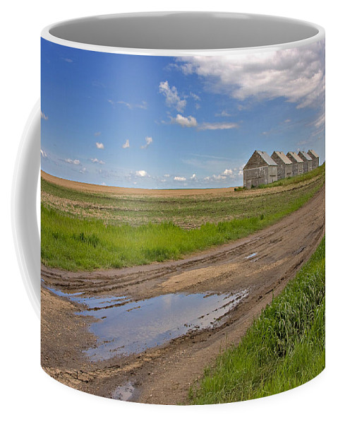 Landscape Coffee Mug featuring the photograph White Sheds On A Prairie Farm In Spring by Louise Heusinkveld