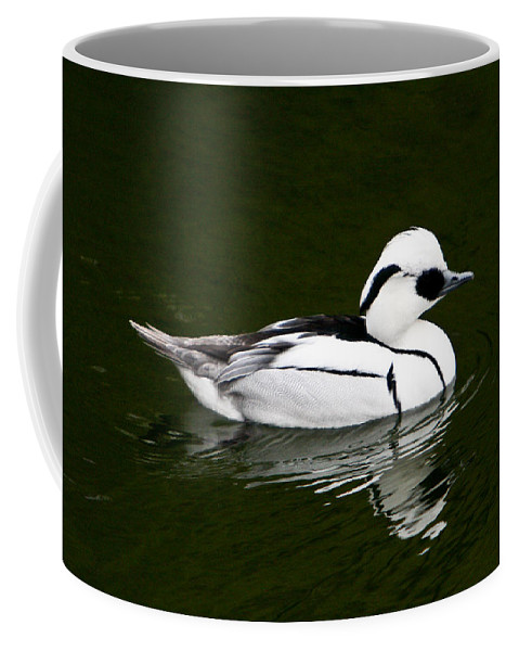 White Coffee Mug featuring the photograph White Smew Duck On Silver Pond by Douglas Barnett