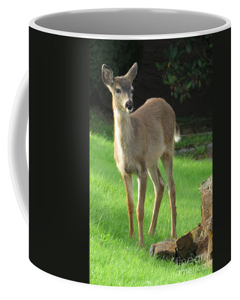 Nature Coffee Mug featuring the photograph White-tail Fawn by Frank Townsley