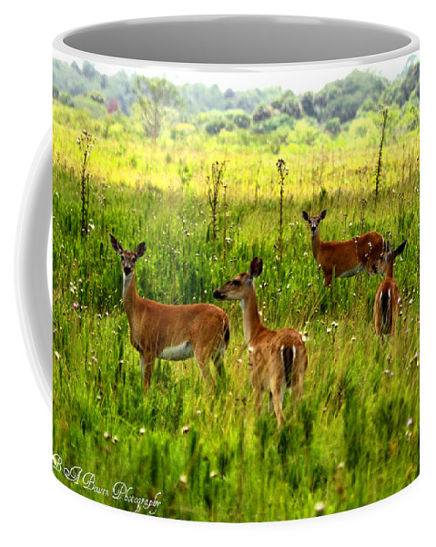 Whitetail Deer Coffee Mug featuring the photograph Whitetail Deer Family by Barbara Bowen