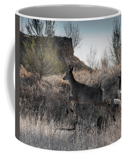 Deer Coffee Mug featuring the photograph Whitetail In Flight by Ernie Echols