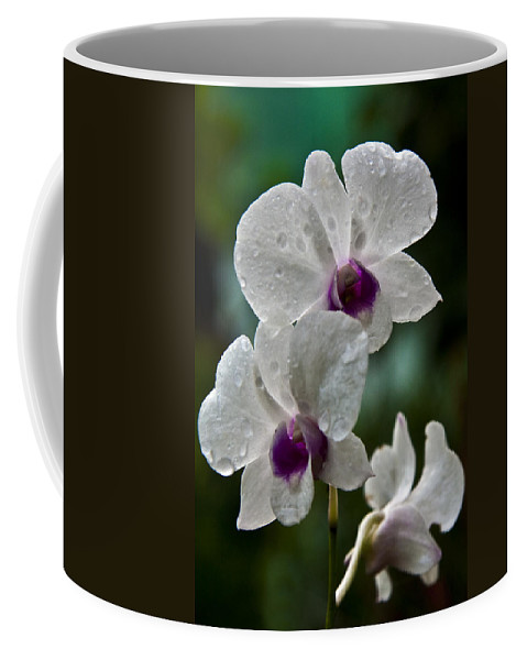 Flower Coffee Mug featuring the photograph Whte Orchids by George Cabig
