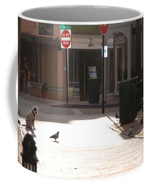 Dog Coffee Mug featuring the photograph Why Question Mark by Rob Hans