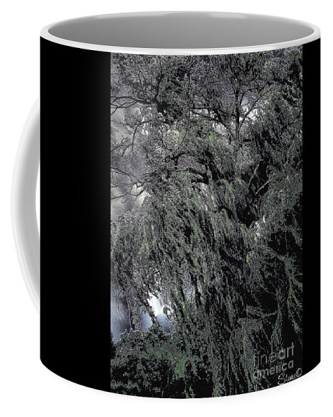 Willow Coffee Mug featuring the photograph Wicked by September Stone
