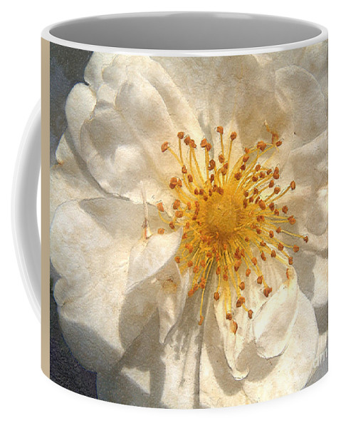 Rose Coffee Mug featuring the painting Wide Open by RC deWinter