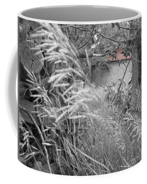 Landscape Coffee Mug featuring the photograph Wilbur's Bin II by Dylan Punke