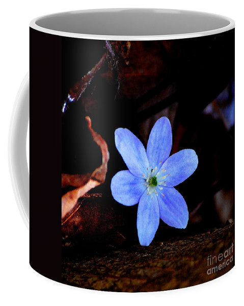 Digital Photo Coffee Mug featuring the photograph Wild Blue by David Lane