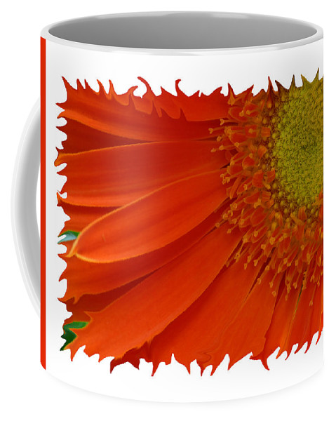 Gerber Daisy Orange Yellow Digital Art Photograph Photography Photographer Flower Plant Nature Coffee Mug featuring the photograph Wild Daisy by Shari Jardina