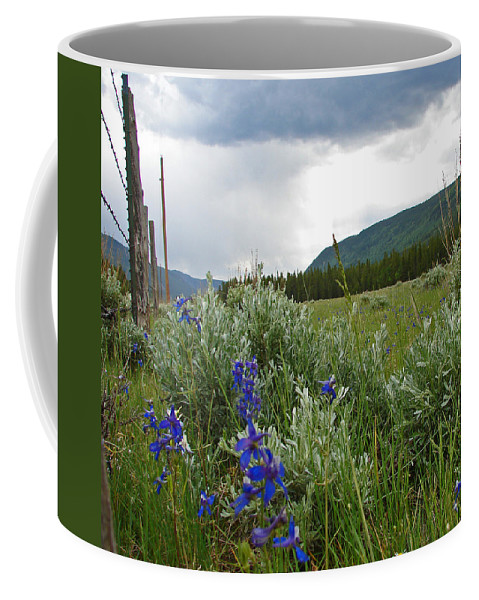 Wild Flowers Coffee Mug featuring the photograph Wild Delphinium by Heather Coen