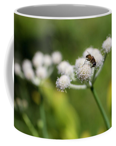 Landscape Coffee Mug featuring the photograph Wild Flower Bluff Lake Ca 3 by Chris Brannen