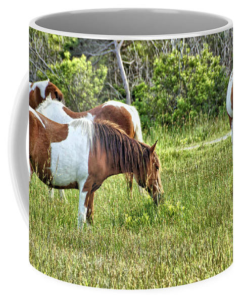 Animal Coffee Mug featuring the photograph Wild Horses Of Assateague 5 by John Trommer