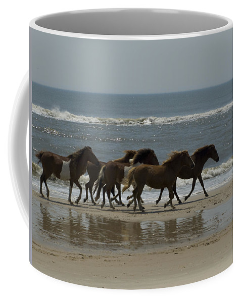 Day Coffee Mug featuring the photograph Wild Horses Run On The Beach by Stacy Gold