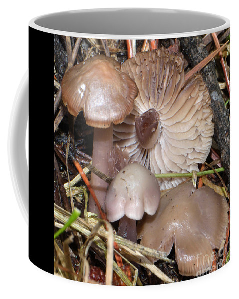 Wild Coffee Mug featuring the photograph Wild Mushrooms by Brad Christensen
