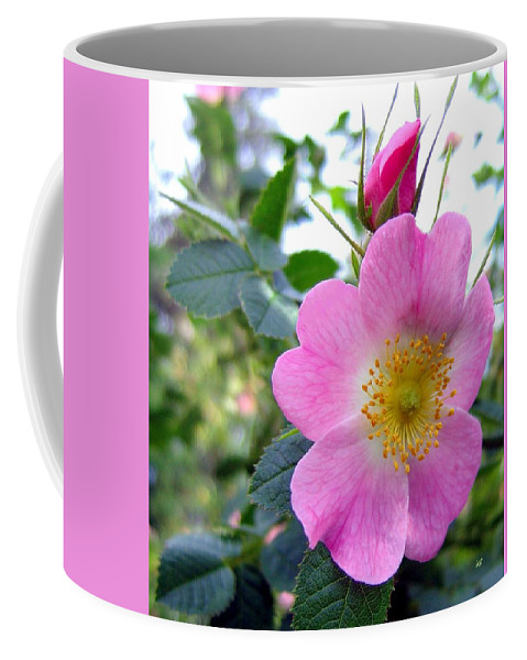 Wild Roses Coffee Mug featuring the photograph Wild Roses 2 by Will Borden