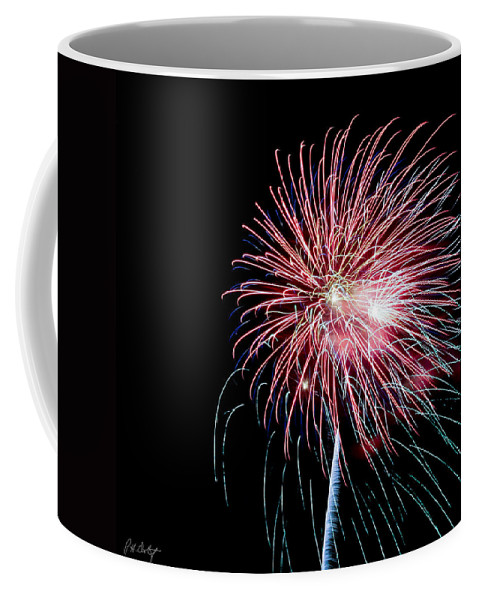 July 4th Coffee Mug featuring the photograph Wild Sky Flower by Phill Doherty