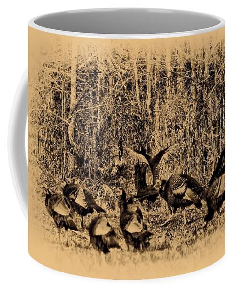 Wild Turkey Coffee Mug featuring the photograph Wild Turkeys by Bill Cannon