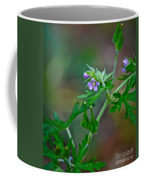 Flower Coffee Mug featuring the photograph Wildflower 1 by Karin Everhart