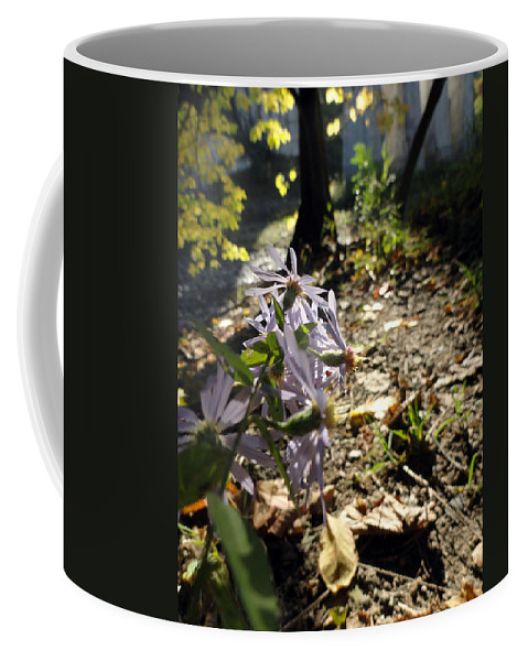 Nature Coffee Mug featuring the photograph Wildflower Looker by Trish Hale