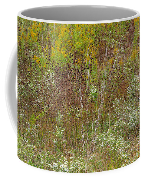 Wildflowers Coffee Mug featuring the photograph Wildflower Tapestry In Jefferson County by Greg Matchick