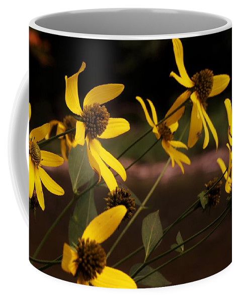 Flowers Coffee Mug featuring the photograph Wildflowers Creekside by Alison Gregg