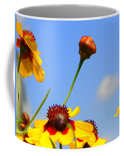 Photography Coffee Mug featuring the photograph Wildflowers by J R Seymour