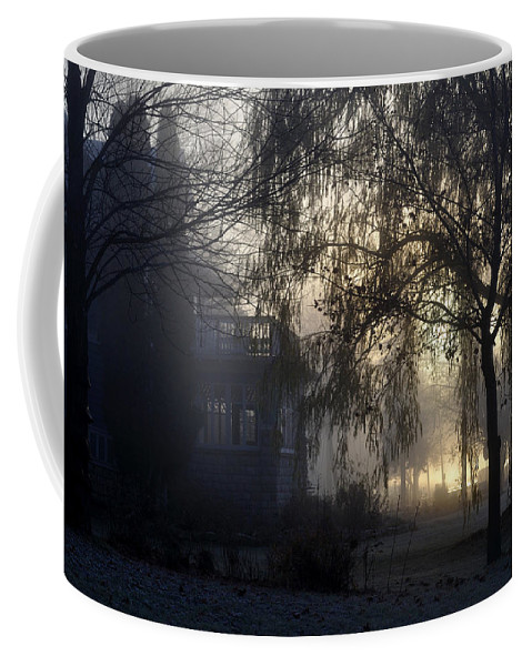 Fog Coffee Mug featuring the photograph Willow In Fog by Tim Nyberg