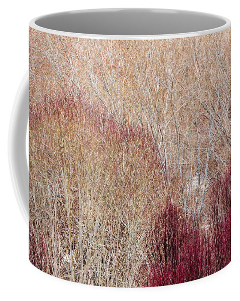Willow Coffee Mug featuring the photograph Willows In Winter by Hitendra SINKAR