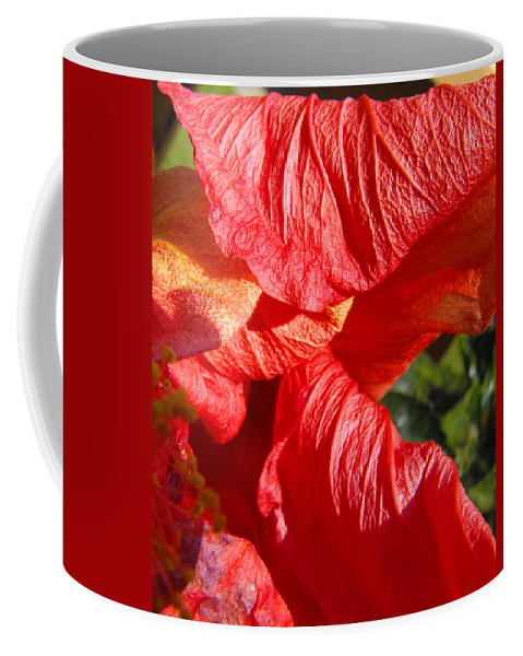 Hibiscus Coffee Mug featuring the photograph Wilting Hibiscus Two by Ruth Palmer